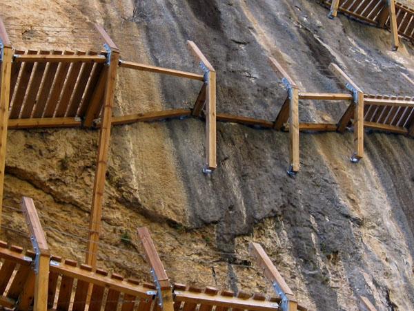 Seccion de maderas - 3 9